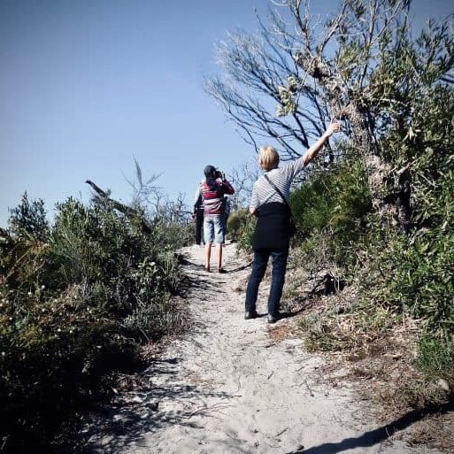 people walking on a dedicated trail path